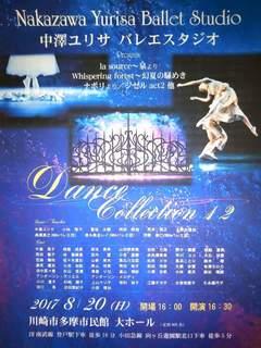 中澤ユリサ バレエスタジオ Dance Collection12.jpg